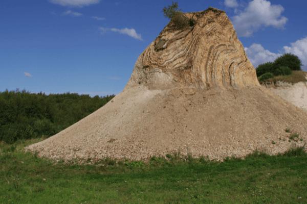 La terre diatomée tue-t-elle les puces?